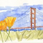 Bridge and more Poppies